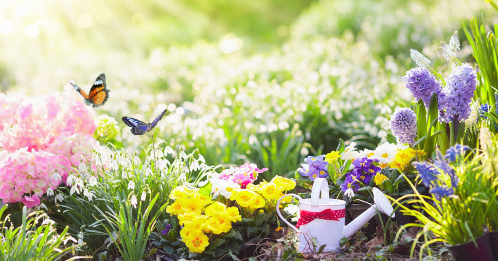 Gardening Is Not Just A Perfect Way To Beautify Your Yard, Enhance Your  Outdoor Living Space, Or Grow Delicious, Nutritious Vegetables.
